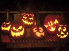 Halloween is alvast begonnen bij Charlotte's Pompoenen