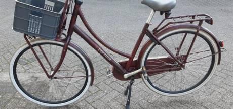 Dieven laden fietsen in busje in Tiel