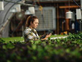 Dicht bij de natuur en tussen de dieren: deze jobs kan je doen in de landbouwsector