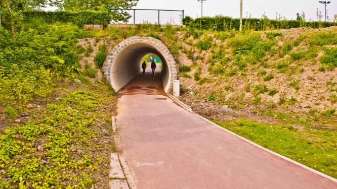 Tunnelwandeling langs Niel, Boom en Rumst is 'Wandeling van het jaar'