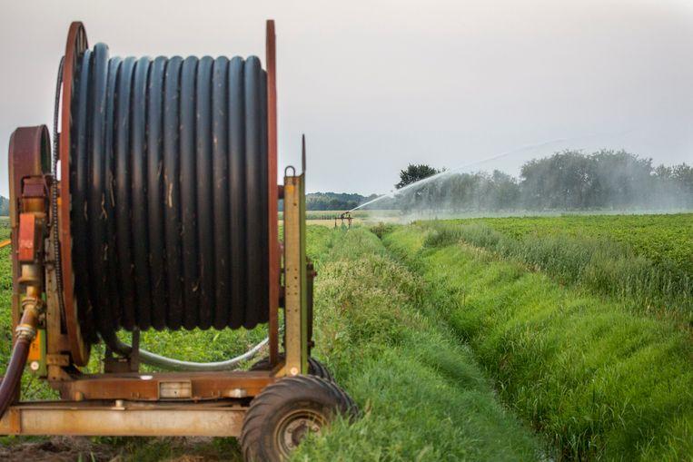 Het waterschap controleert het verbod op waterontrekking.  Beeld Arie Kievit