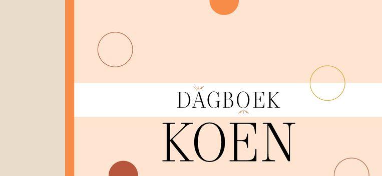 """Dagboek Koen 07: """"Stel: Lot is helemaal niet zwanger en ik heb me dat alleen maar laten wijsmaken"""""""