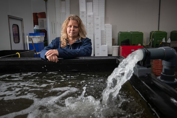 Anja Keuter, van visbedrijf Live Seafood Urk.