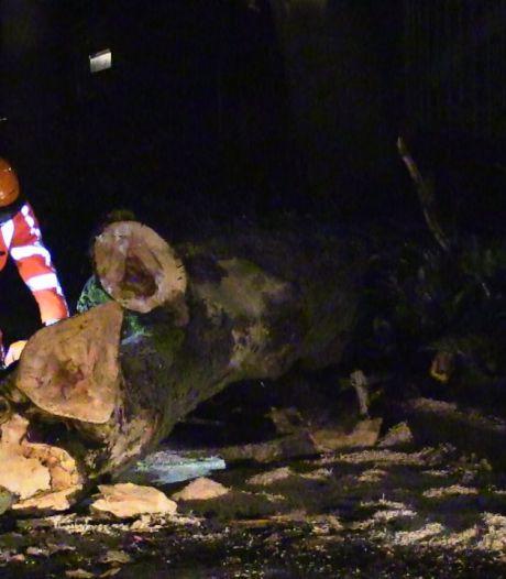 Stormschade in Twente: op meerdere plekken bomen omgewaaid