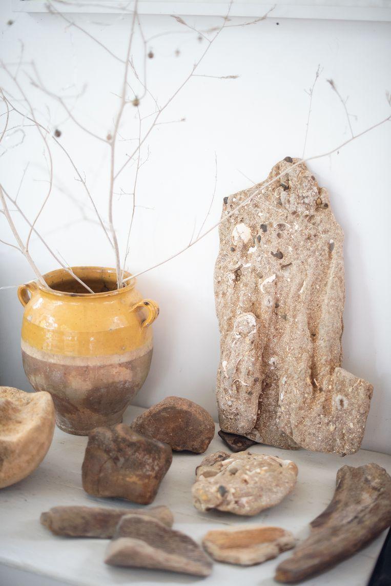 Julia Blackburn: 'Zolang ik me herinner, verzamel ik alles wat ik vind: stenen, fossielen, ga zo maar door.' Beeld Tom Lucas