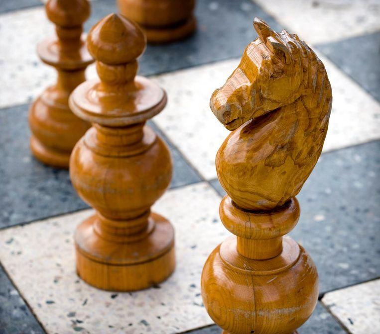 De schaakcolumn van Gert Ligterink krijgt een doorstart op de sportpagina's. Beeld null