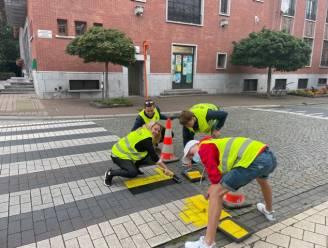Jong Leefbaarder Zele hult zebrapad in kleuren Vlaamse vlag