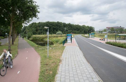 Het Dassenbos blijft gespaard, maar achter het Dassenbos is een nieuwe weg gepland.
