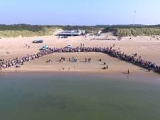 Honderden mensen zien zeehonden hun vrijheid tegemoet schuifelen: 'Hij gaat terug naar zijn moeder'