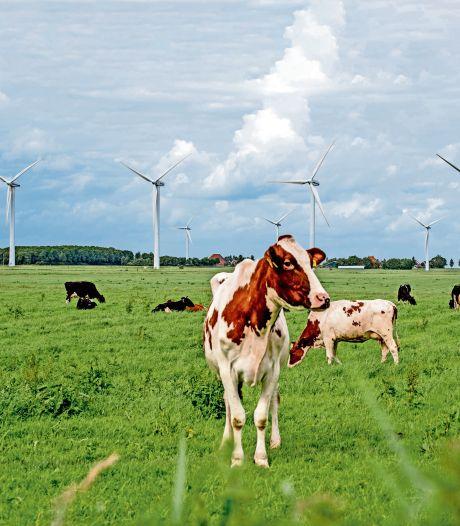 Windmolenlocaties in Rijssen-Holten bepaald zonder inspraak? 'Dat kaartje ken ik niet'