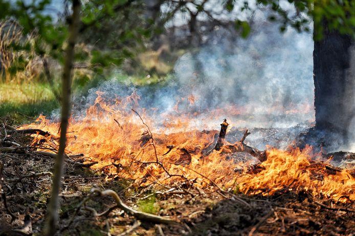 De brand in natuurgebied Puttendijk was snel onder controle.