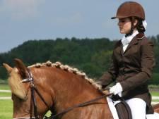 Paard Carona seksueel misbruikt op manege, eigenaren in shock