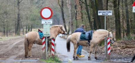 Paarden schrikken van scooterrijders in poncho en slaan op hol, amazone komt ten val