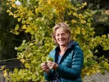 Kruidengeneeskundige Marianne Holtslag uit Neede: 'Ik ben voor wildplukken, maar let op waar je dat doet'