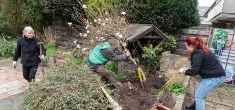 Planten gered van wisse dood door 'struikrovers': 'Blij dat ik een stukje Soesterberg mee kan nemen'
