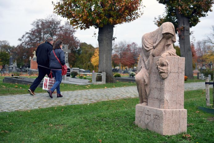 Op de Stadsbegraafplaats in Leuven wordt de komende jaren een experiment uitgevoerd met verschillende soorten planten en bomen.