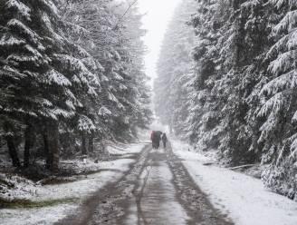 Opnieuw sneeuw in Hoge Venen, tweede week van paasvakantie begint fris