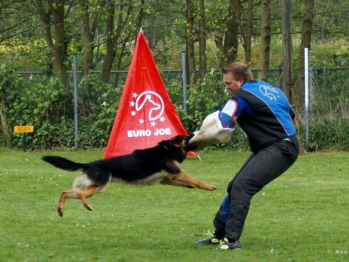 Actiefoto (archief) van de Vereniging van Fokkers en Liefhebbers van Duitse herdershonden in Etten-Leur. De club. nu nog gehuisvest aan de Zeedijk, moet omzien naar een nieuwe locatie.