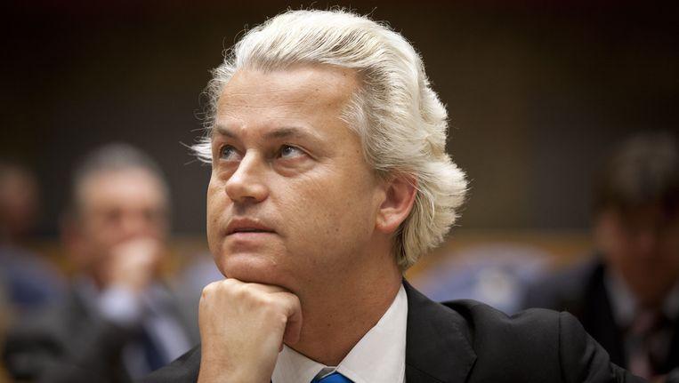 Wilders. Beeld null