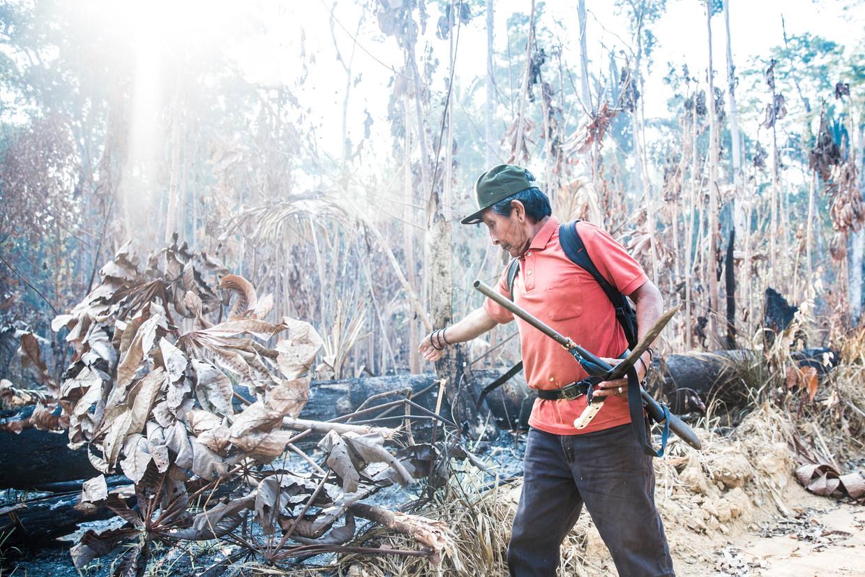 Aripã Karipuna, met jachtgeweer in de aanslag tegen mogelijke indringers, op het stuk ontbost land aan de grens van hun grondgebied. Half verschroeide boomstammen staan als skeletten om hem heen. Beeld Marlena Waldthausen