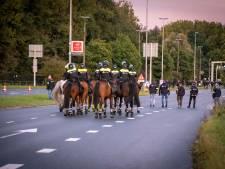 Ongeregeldheden bij Vitesse: 'Die gasten van Feyenoord werden helemaal gek, maar niet groter maken dan het is'