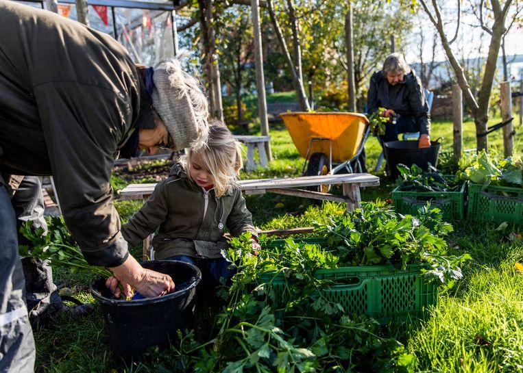 Annemarie Verschoor (67) neemt af en toe haar vierjarige kleindochter Leyla mee.  Beeld Lin Woldendorp