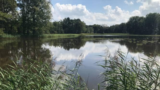 Natuurorganisaties slaan alarm over nieuw bedrijventerrein Misterweg: ecologische zone in gevaar