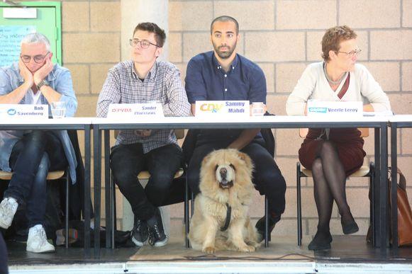 Sammy Mahdi (CD&V) centraal tijdens het schooldebat. Hond Pamuk hield zich anderhalf uur lang gedeisd onder de tafel tijdens het debat in het Onze-Lieve-Vrouwinstituut.