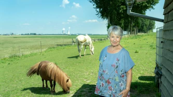 """Danni Heylen laadt zichzelf weer op tussen haar dieren: """"Ik denk nog elke dag aan Johny. Mijn paard dat me komt troosten, dat is de beste therapie"""""""