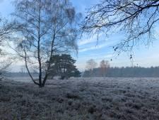 'Vrij baan voor levende grasmaaiers in de Maashorst'