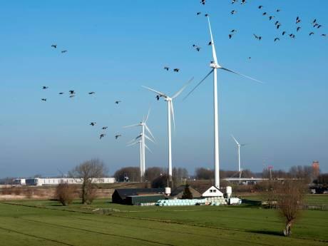 Windmolens liggen gevoelig, tóch blijft Utrecht zoeken naar plekken: 'U bent nog niet van ons af'