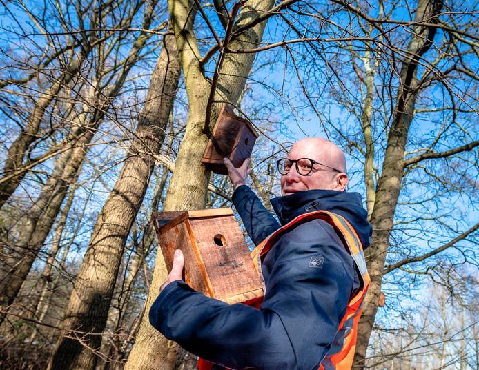 Ronald Loch hangt in Rotterdam een mezenkastje op in de strijd tegen de eikenprocessierups