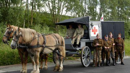 Familie bouwt 'paardenambulance'