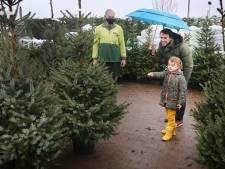 Adoptieboom en vega-diner: tips voor een groene kerst