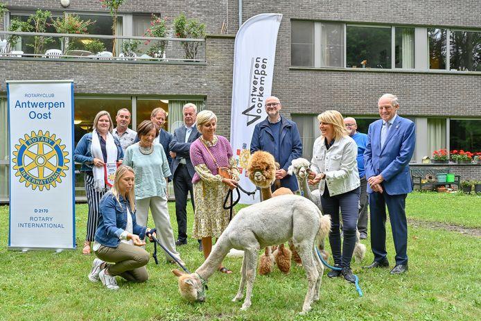 Rotaryclubs Antwerpen-Oost en Antwerpen-Voorkempen hebben drie alpaca's geschonken aan woonzorgcentrum Sint-Lodewijk in 's-Gravenwezel