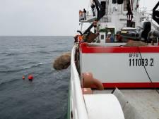 'Aangifte tegen Greenpeace om zwerfkeien in zee'