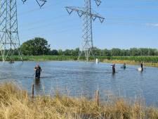 Twentse visploeg redt vissen in Zuid-Limburg: 'De karpers liggen op het fietspad'