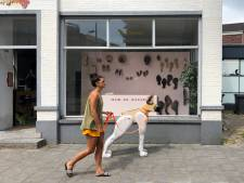 Geldropseweg zit cultureel in de lift: 'Eindhoven kan wel initiatieven gebruiken op dit gebied'