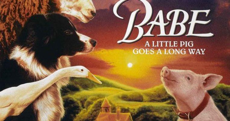 Het varkentje werd vernoemd naar het zwijntje 'Babe'.  In die Australische film uit 1995 neemt een varkentje met succes  de rol van herdershond op zich.