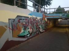 Kunstwerk fietstunnel in Oss nog niet af, nu al beklad