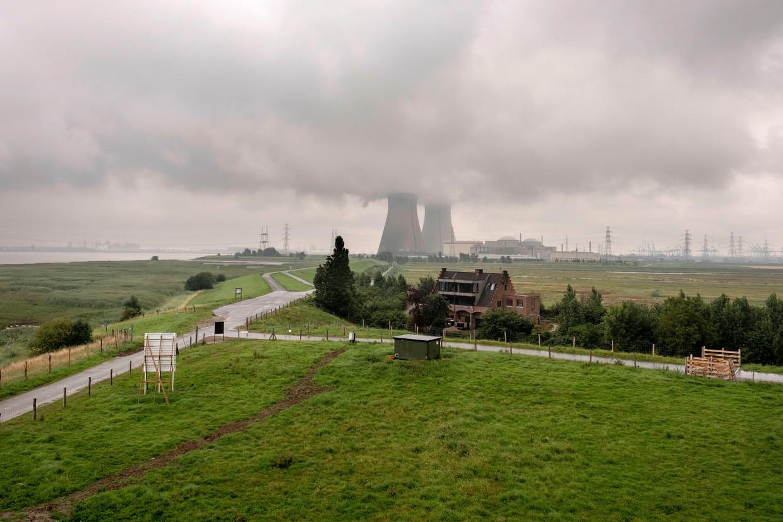 De Hedwigepolder met op de achtergrond kerncentrale Doel.