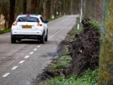 Zorgen over staat van bomen tussen Zevenbergen en Moerdijk