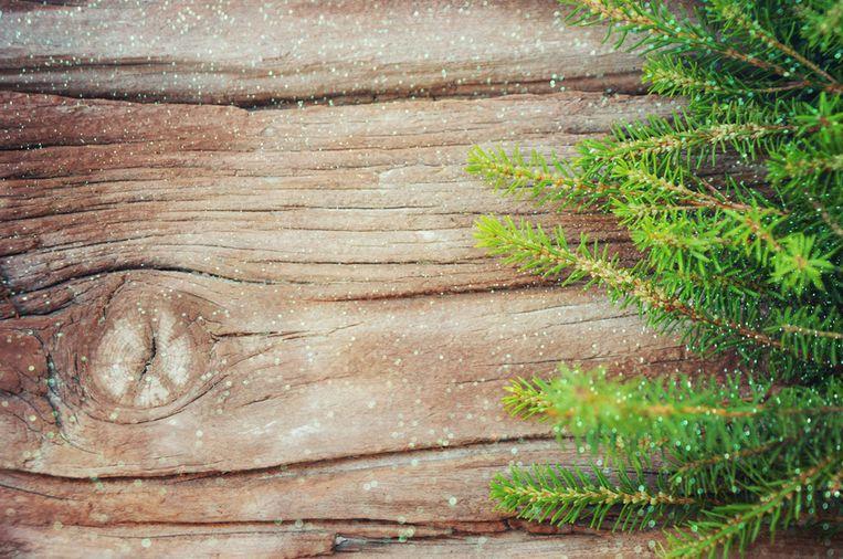 christmas-fir-tree-on-the-wooden-board.jpg