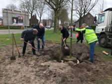 Van Gerwen plant kampioensboom in Vlijmen