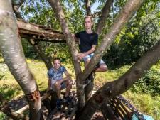 Zedi en Jespers Waalrese boomhut is nooit af