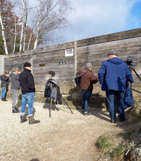 Vogelaars vergapen zich weer aan broedende oehoe in steengroeve Winterswijk