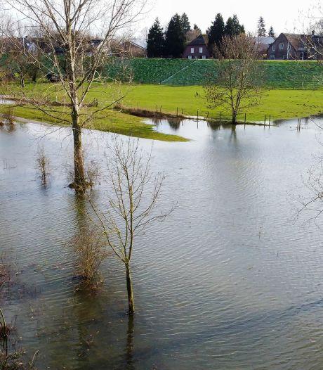Hoogwater in de Maas: rivier treedt honderden meters buiten oevers bij Maren-Kessel