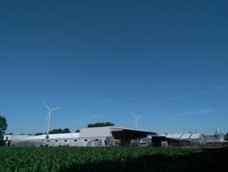 """Minister weigert vergunning voor windturbines op en rond industrieterrein: """"Wat een opluchting"""""""