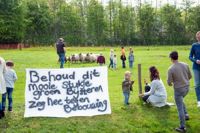 De protestactie van omwonenden in Putten heeft geholpen, voorlopig kunnen hier de Drentse Heideschapen van de kudde Triskel Bree blijven grazen en worden er geen flexwoningen gebouwd aan de Huybertsenweg