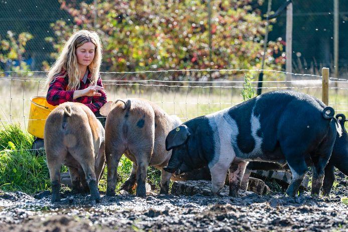Ellen Willems en haar varkens.